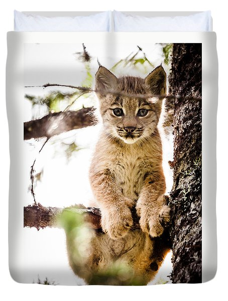 Lynx Kitten In Tree Duvet Cover