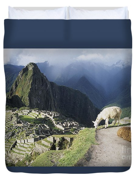Machu Picchu And Llamas Duvet Cover by James Brunker
