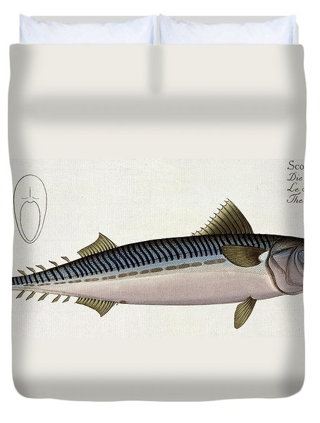 Mackerel Duvet Cover by Andreas Ludwig Kruger