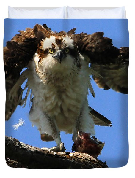 Mad Osprey Duvet Cover by Roger Becker