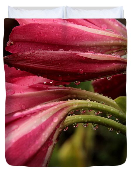 Duvet Cover featuring the photograph Magenta Rain by Greg Allore