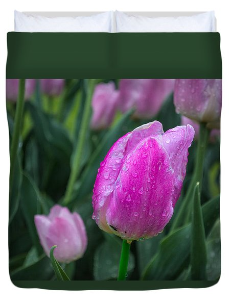 Magenta Tulip In Rain At Brandenburg Duvet Cover