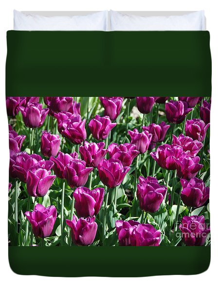 Duvet Cover featuring the photograph Magenta Tulips by Allen Beatty