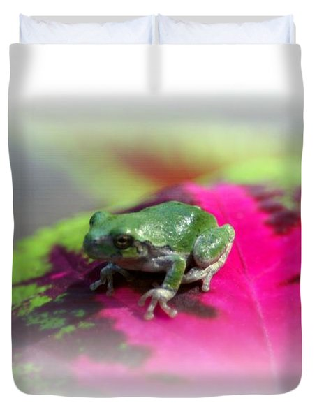 Magic Carpet Coleus Leaf Duvet Cover by Barbara S Nickerson