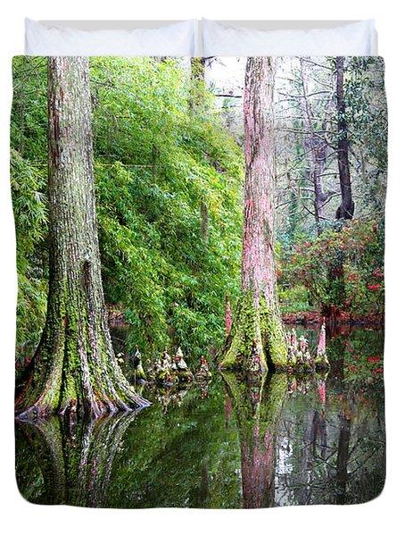 Magical Cypress Swamp Duvet Cover by Carol Groenen