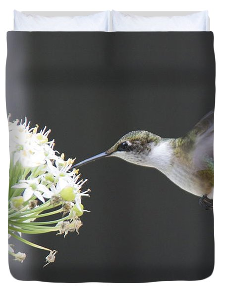 Magical Hummingbird Duvet Cover