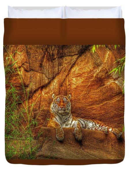 Magnificent Tiger Resting Duvet Cover by Andy Lawless