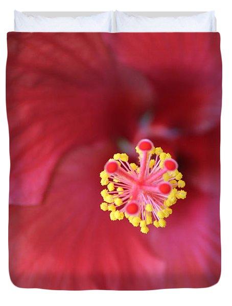 Magnolia 5  Duvet Cover