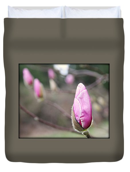 Duvet Cover featuring the photograph Magnolia Buds by Katie Wing Vigil
