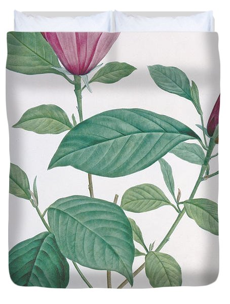 Magnolia Discolor Engraved By Legrand Duvet Cover by Henri Joseph Redoute