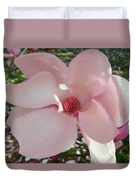 Magnolia Surprise Duvet Cover by Emmy Marie Vickers