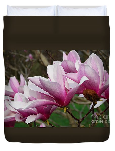 Duvet Cover featuring the photograph Magnolia Tree Flower by Eva Kaufman