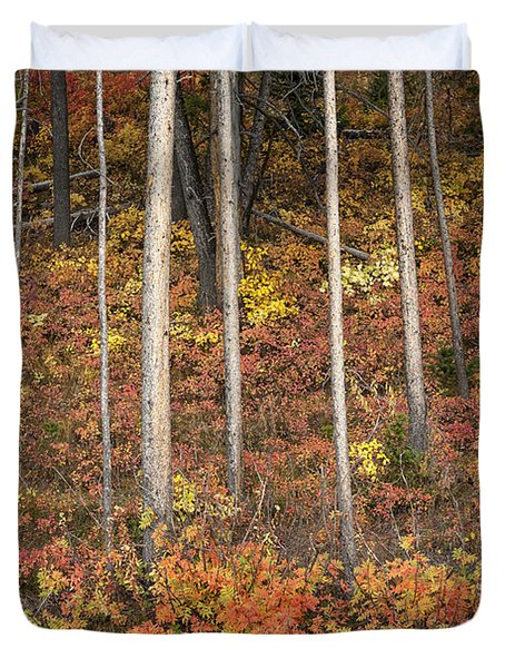 Majestic Autumn In The Grand Tetons Duvet Cover by Sandra Bronstein