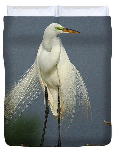 Majestic Great Egret Duvet Cover by Bob Christopher