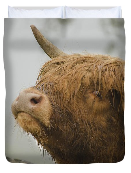 Majestic Highland Cow Duvet Cover
