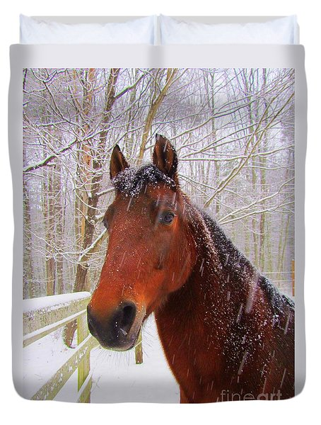 Majestic Morgan Horse Duvet Cover by Elizabeth Dow