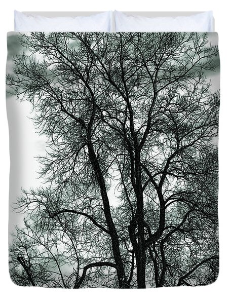 Duvet Cover featuring the photograph Majesty by Lauren Radke