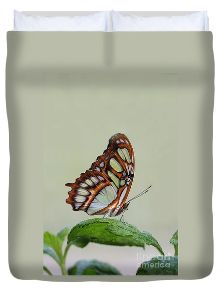 Malachite Butterfly #5 Duvet Cover