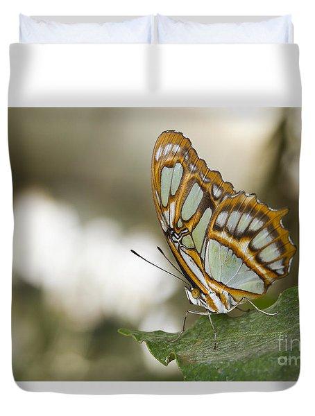 Malachite Butterfly Duvet Cover by Bryan Keil