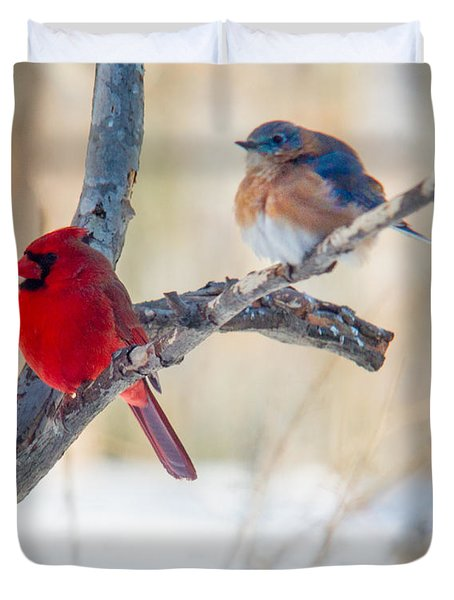 Male Bluebird And Cardinal On Branch Duvet Cover