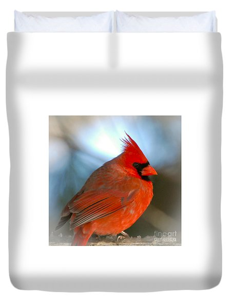Male Cardinal  Duvet Cover by Kerri Farley