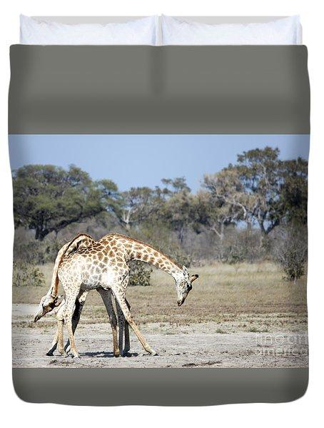 Duvet Cover featuring the photograph Male Giraffes Necking by Liz Leyden