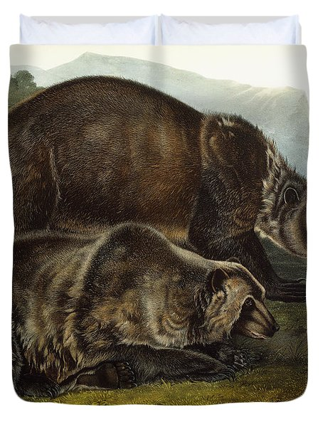 Male Grizzly Bear Duvet Cover by Audubon