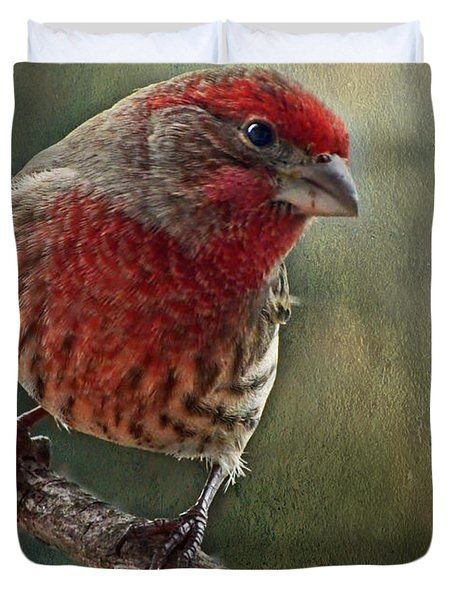 Male Housefinch With Green Texture And Decorations Duvet Cover by Debbie Portwood