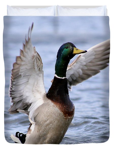 Male Mallard Duck Duvet Cover