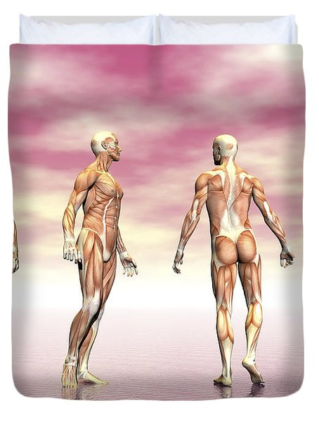 Male Muscular System From Four Points Duvet Cover by Elena Duvernay