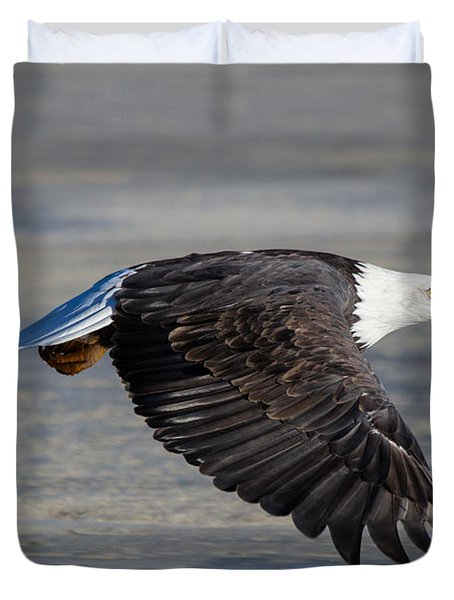 Male Wild Bald Eagle Ready To Land Duvet Cover