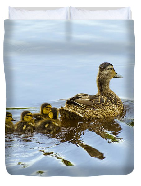 Mallard And Chicks  Duvet Cover by Chris Flees