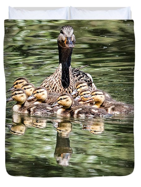 Mallard Hen With Ducklings And Reflection Duvet Cover