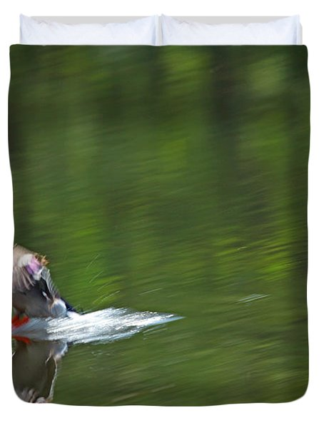 Mallard Splash Down Duvet Cover