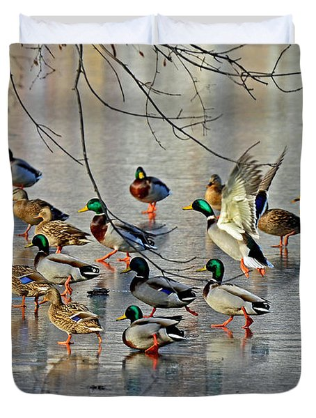 Mallards On A Frozen River Duvet Cover by Rodney Campbell