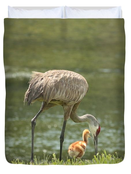 Mama And Chick Duvet Cover by Carol Groenen