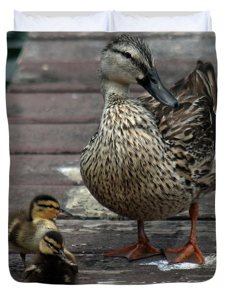 Mama Duck And Ducklings Duvet Cover by Pamela Walton