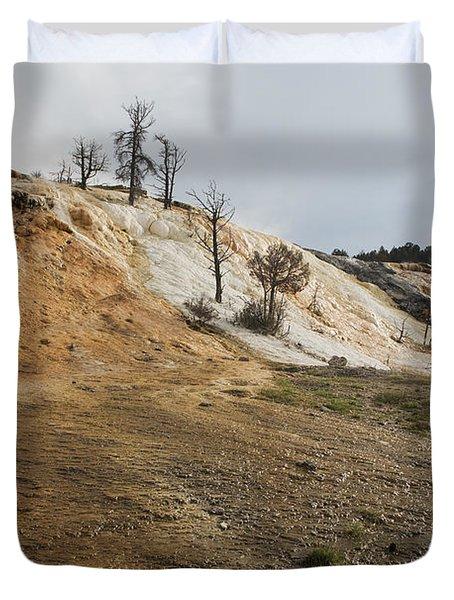 Mammoth Hot Springs Duvet Cover by Belinda Greb