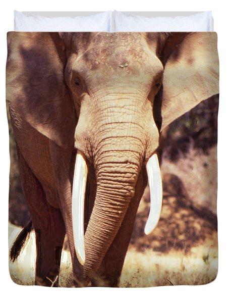 Mana Pools Elephant Duvet Cover