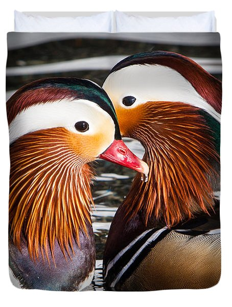 Mandarin Lovers Duvet Cover