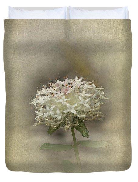 Duvet Cover featuring the photograph Mandy by Elaine Teague
