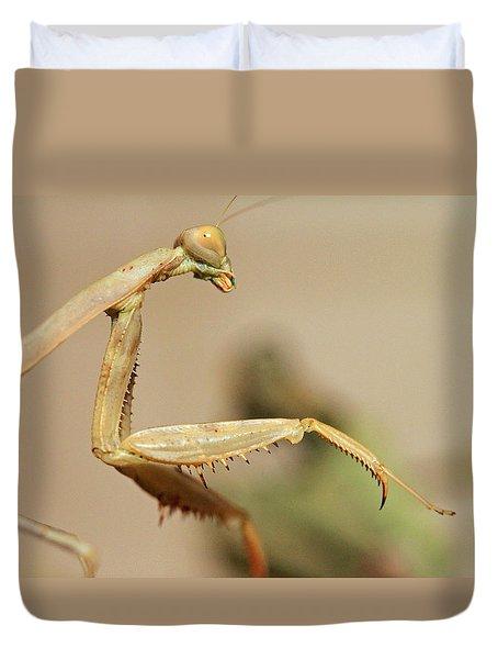 Mantis On The Hunt Duvet Cover by Shoal Hollingsworth