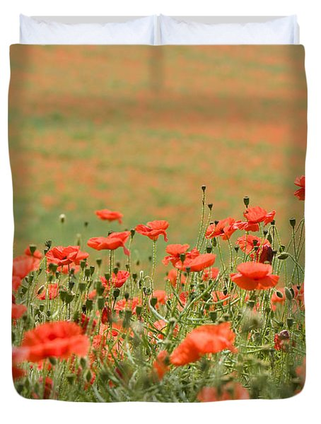 Many Poppies Duvet Cover by Anne Gilbert