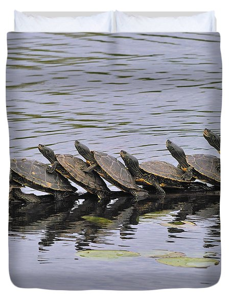 Map Turtles Duvet Cover by Tony Beck
