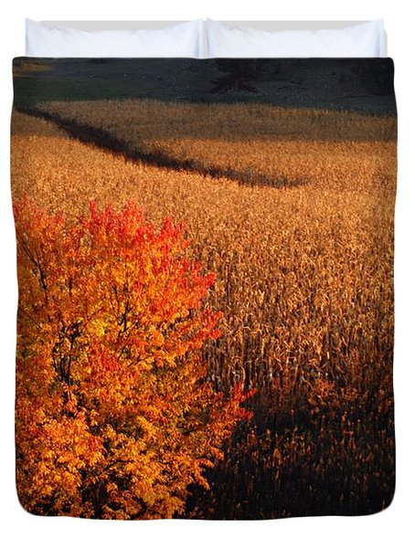 Maple And Cornfield At Dawn Duvet Cover by Larry Ricker