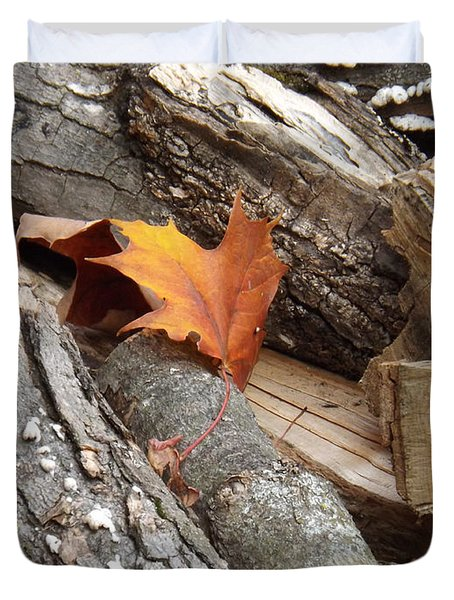 Maple Leaf In Wood Pile Duvet Cover by Brenda Brown