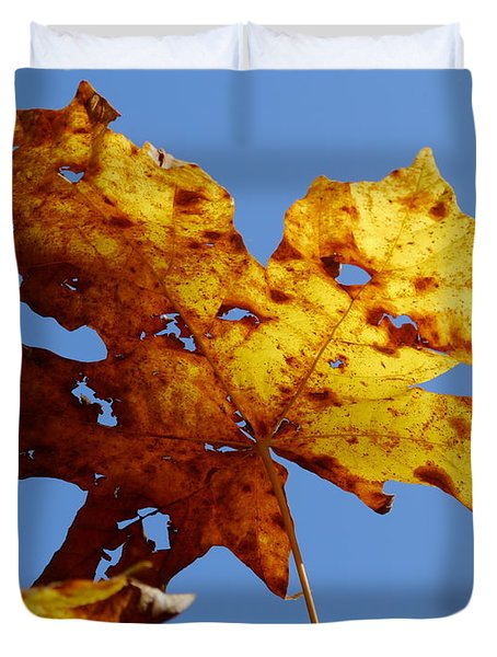 Maple Leaf On A Blue Sky Duvet Cover