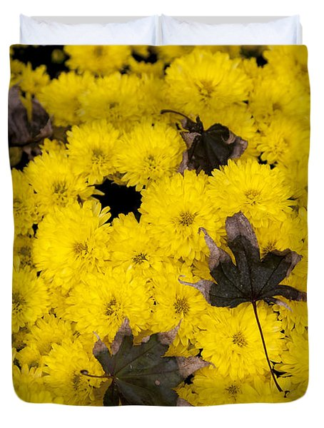 Maple Leaves On Chrysanthemum Duvet Cover