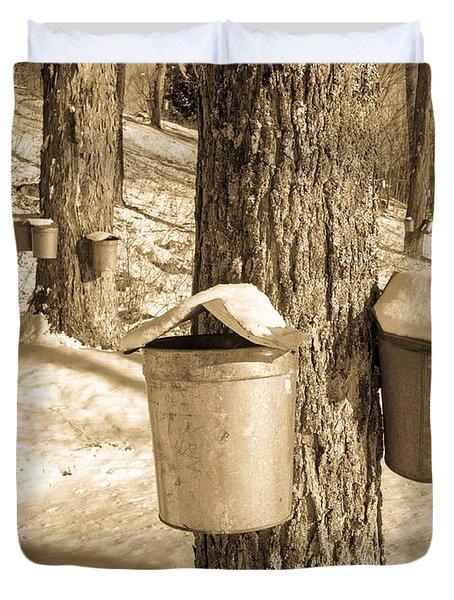Maple Sap Buckets Duvet Cover by Edward Fielding