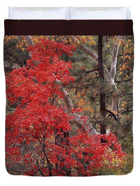 Maple Sycamore Pine-h Duvet Cover
